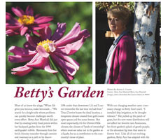 "Cheviot Living Magazine ""Betty's Garden"" by Katrina L. Coombs"